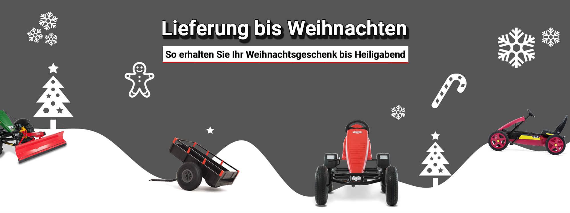 Lieferung zu Weihnachten - bei gokart-profi.de