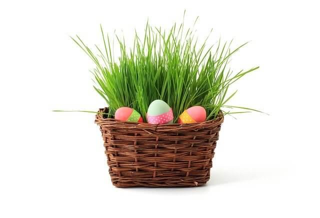 Frohe Ostern wünscht gokart-profi.de