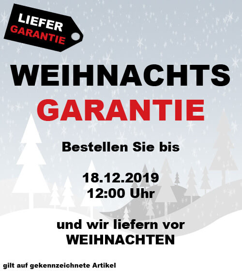 Weihnachtsgarantie auf gokart-profi.de