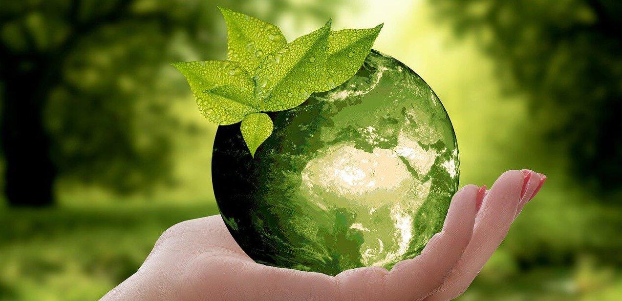 Nachhaltigkeit und Umweltschutz bei GOKART PROFI